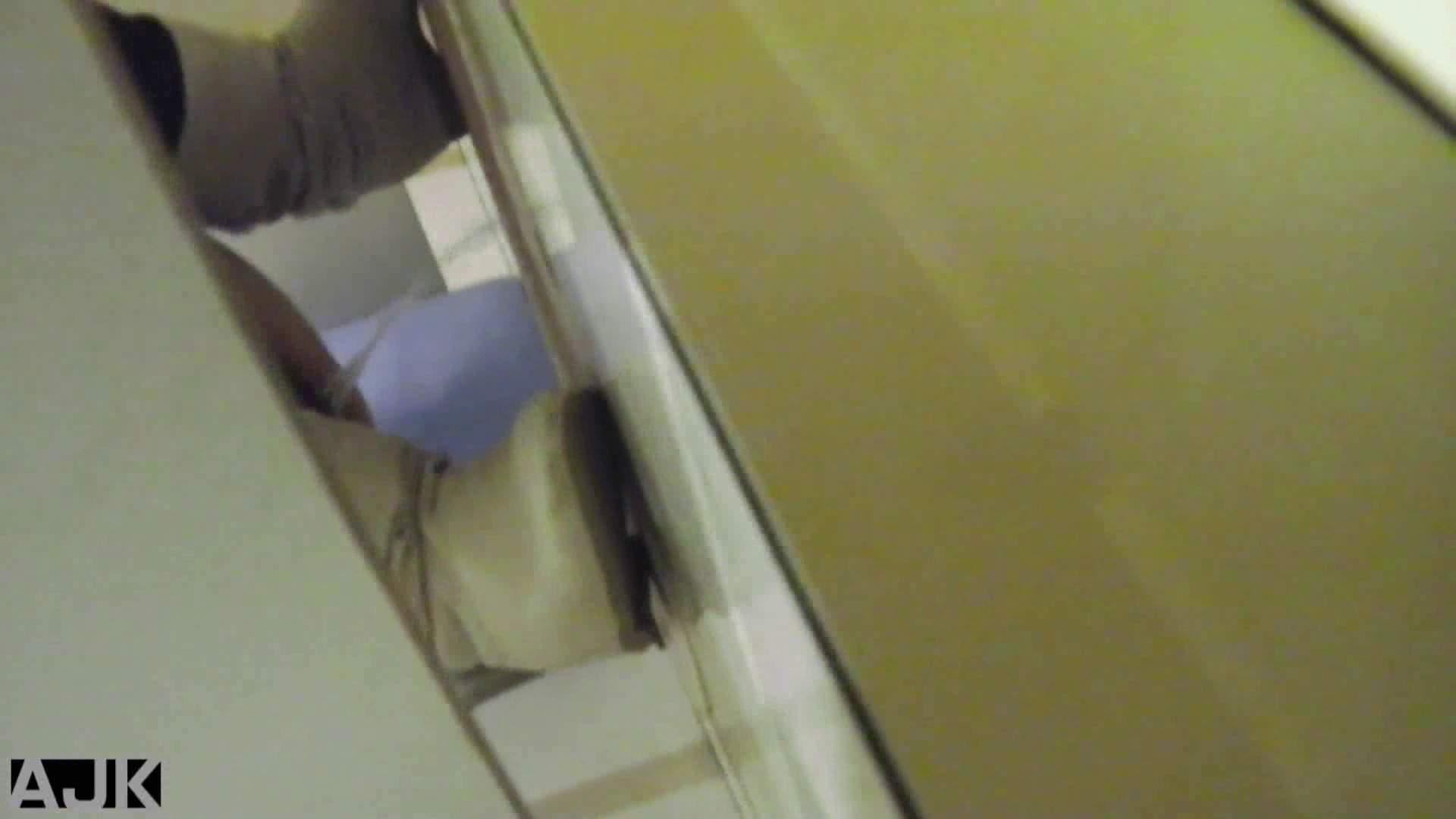 無修正ヌード|隣国上階級エリアの令嬢たちが集うデパートお手洗い Vol.11|怪盗ジョーカー