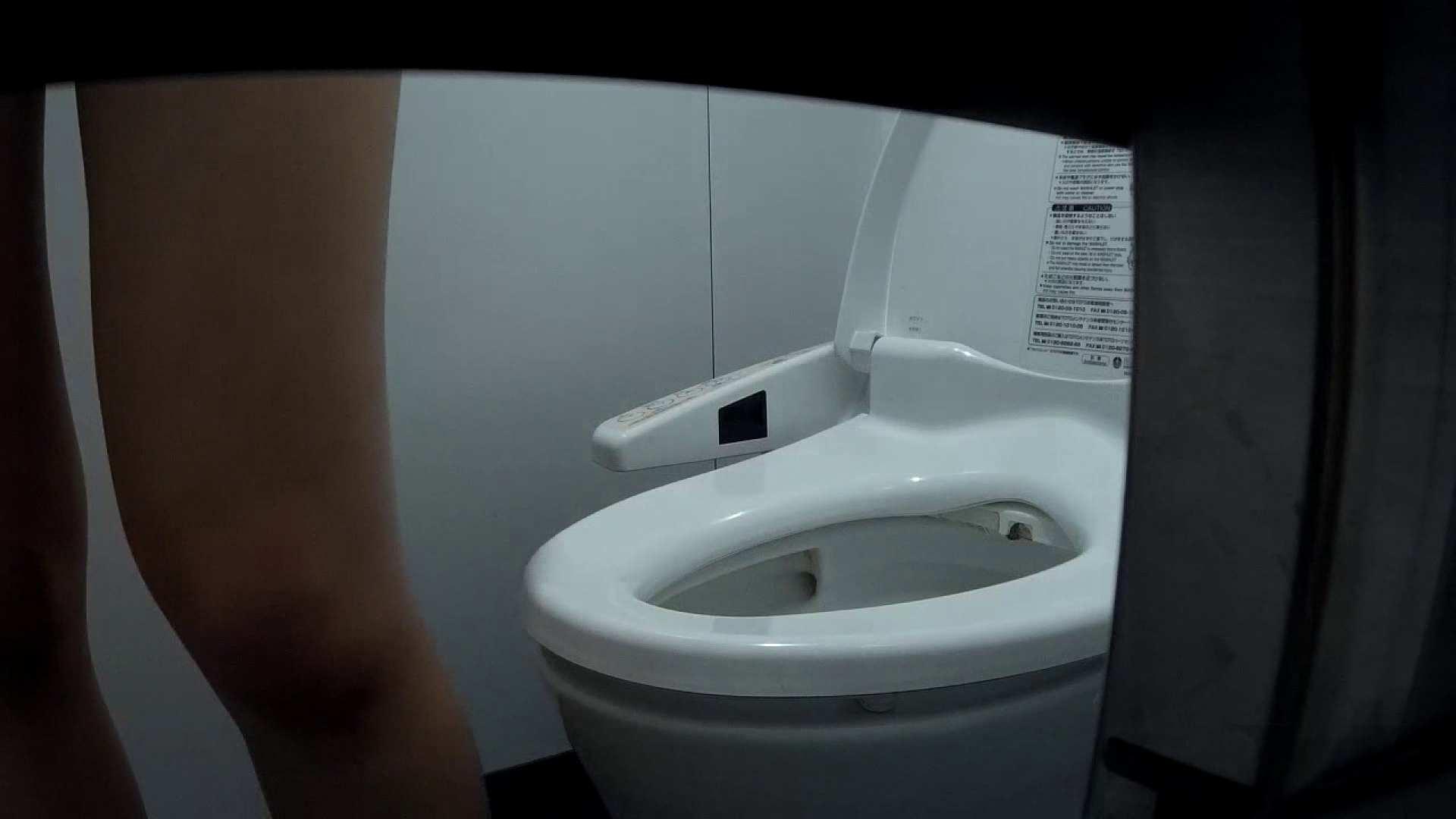 無修正ヌード|有名大学女性洗面所 vol.37 ついでにアンダーヘアーの状態確認ですね。|怪盗ジョーカー