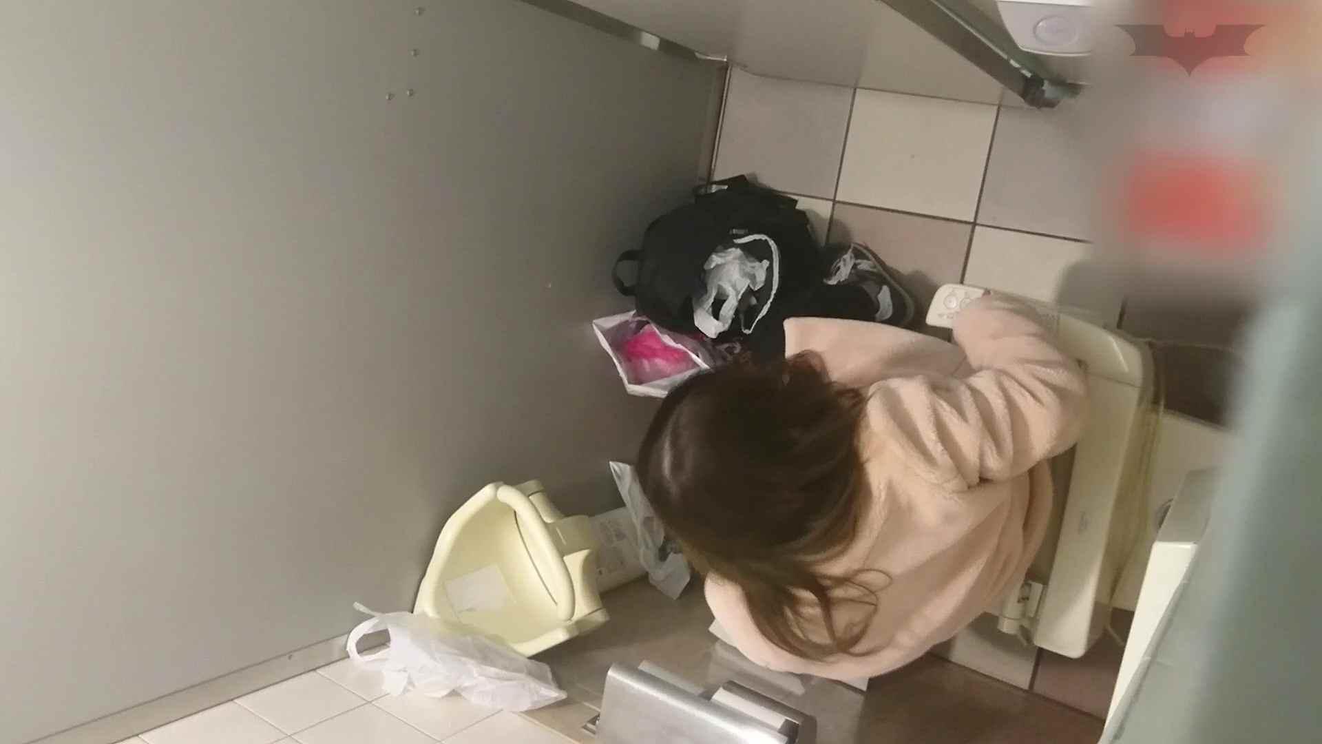 無修正ヌード|化粧室絵巻 ショッピングモール編 VOL.10|怪盗ジョーカー