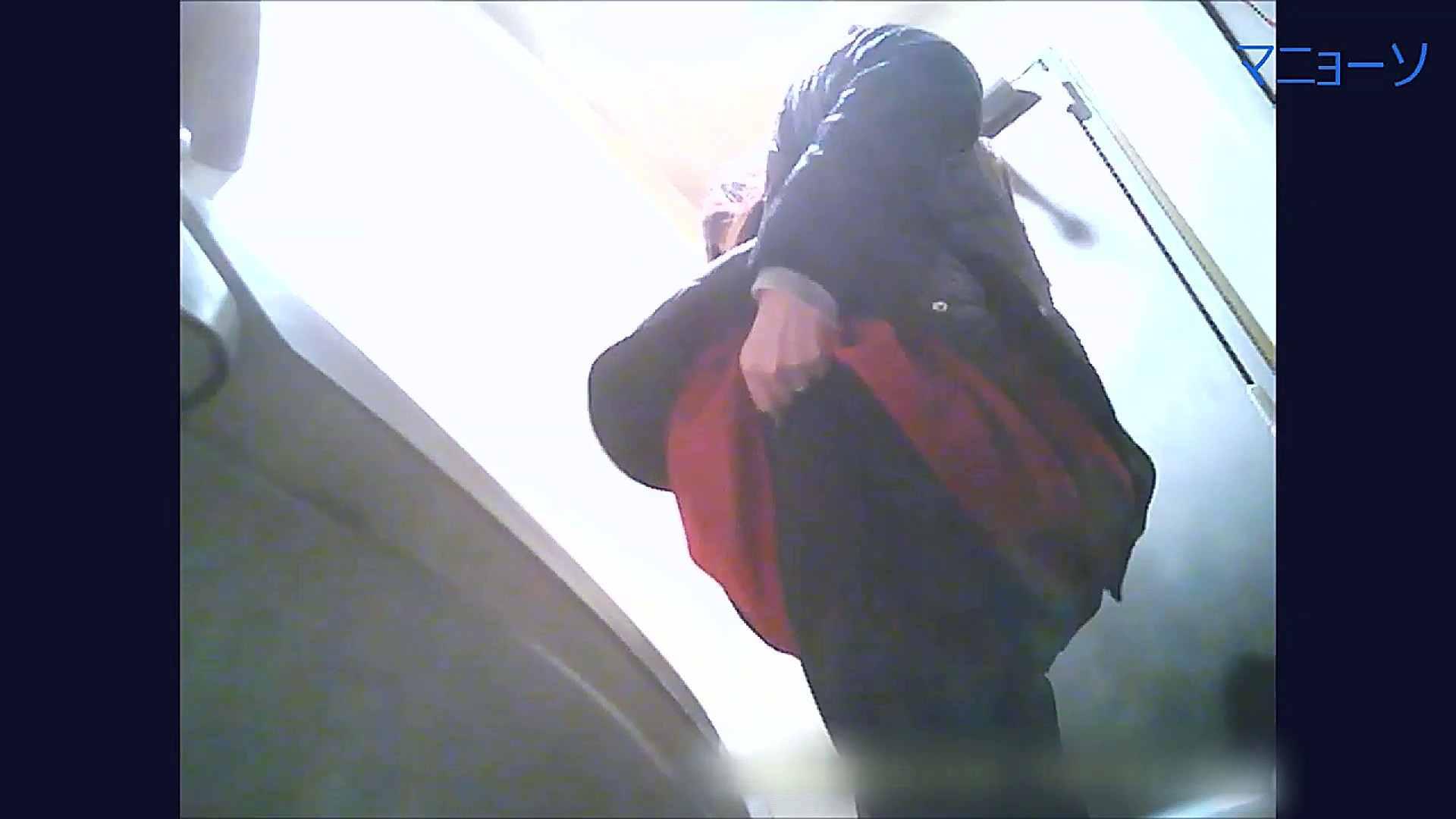 無修正ヌード|トイレでひと肌脱いでもらいました (OL編)Vol.09|怪盗ジョーカー