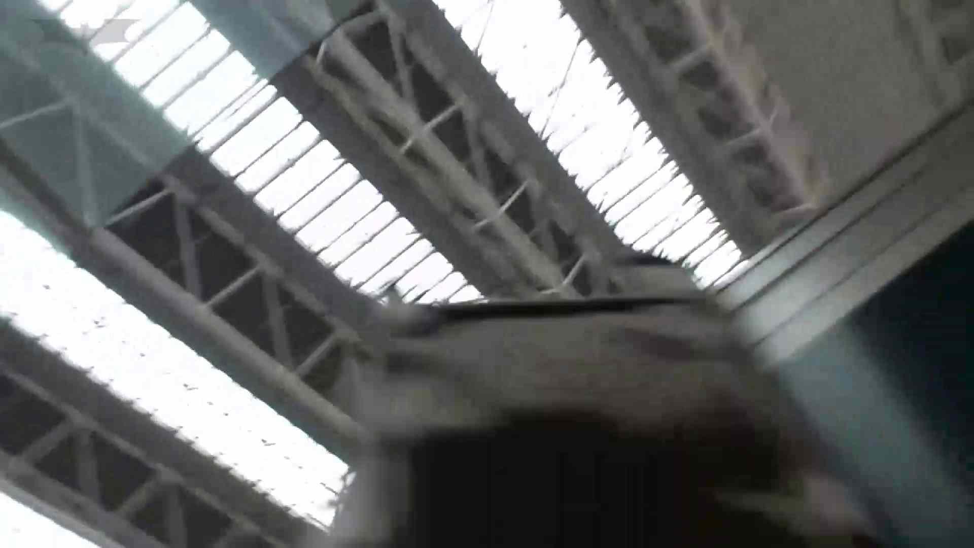 無修正ヌード|盗撮列車 vol.05 制月反のスカートの中が…見たいです。|怪盗ジョーカー