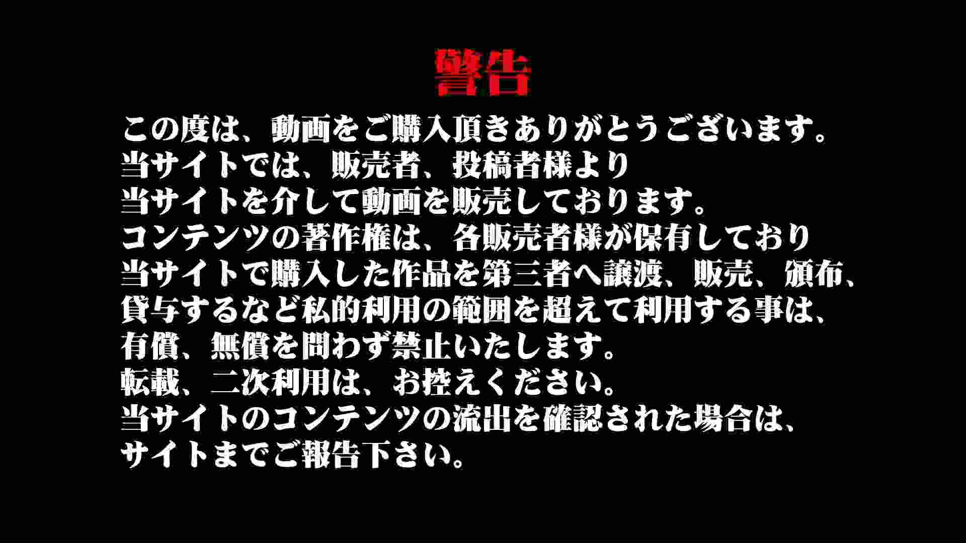 無修正ヌード|美しい日本の未来 No.86つい、No.64 美脚美人のバック撮れました。|怪盗ジョーカー