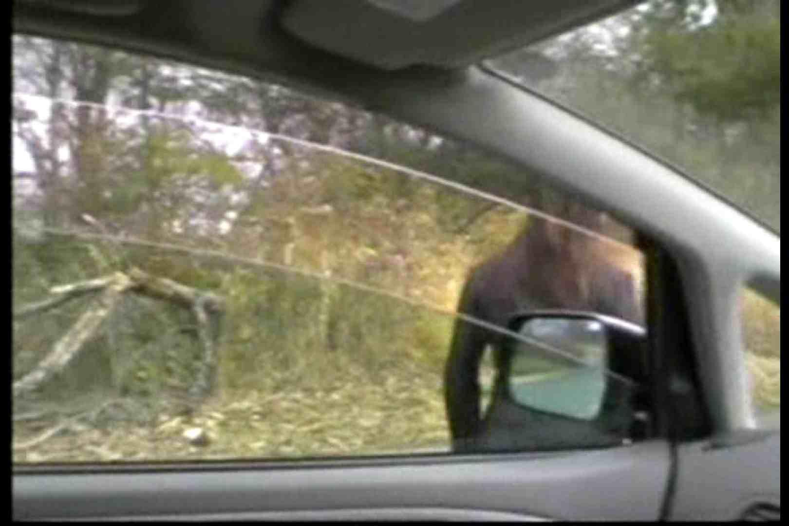 美熟女の野外露出プレイ2 野外 | 熟女の裸体  70画像 11