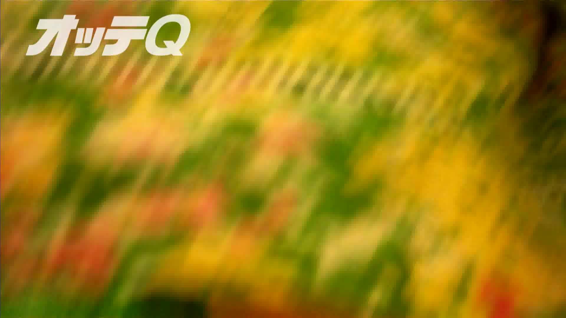 ハイビジョンパンチラ オッテQさんの追跡パンチラデパート編VOL.04 チラ | チラ系  68画像 37