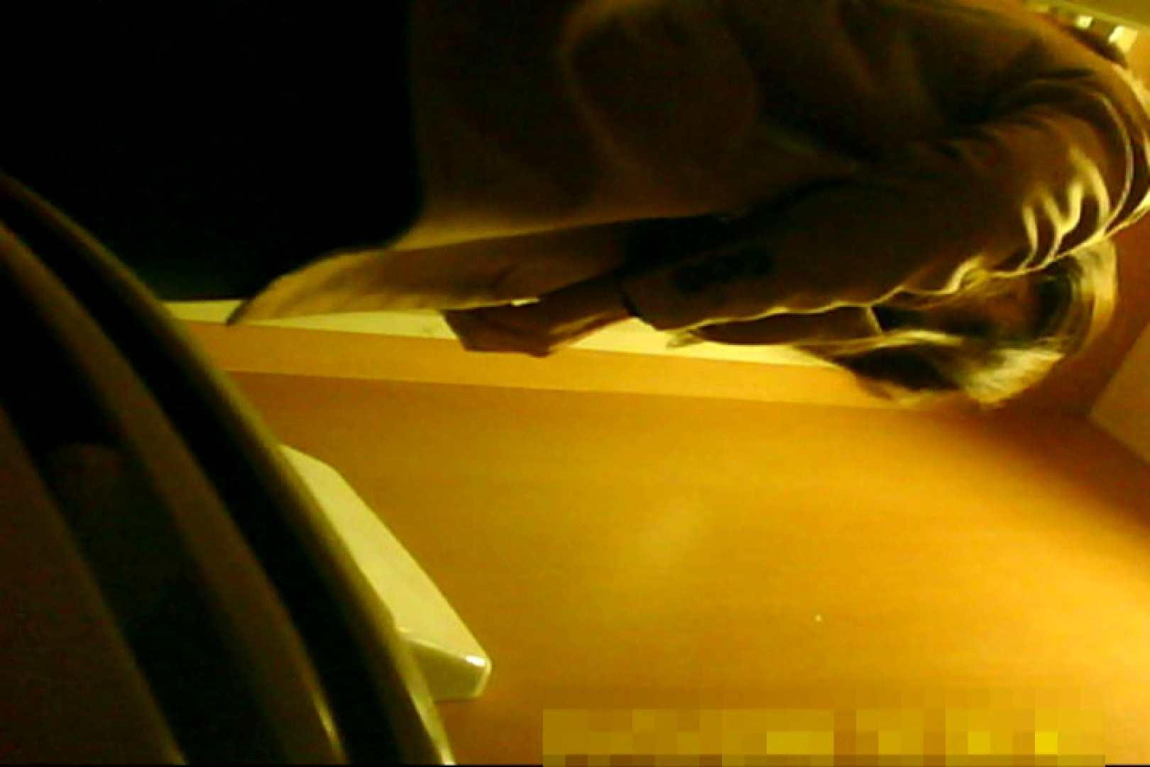 魅惑の化粧室~禁断のプライベート空間~20 チラ | ナプキン  71画像 43
