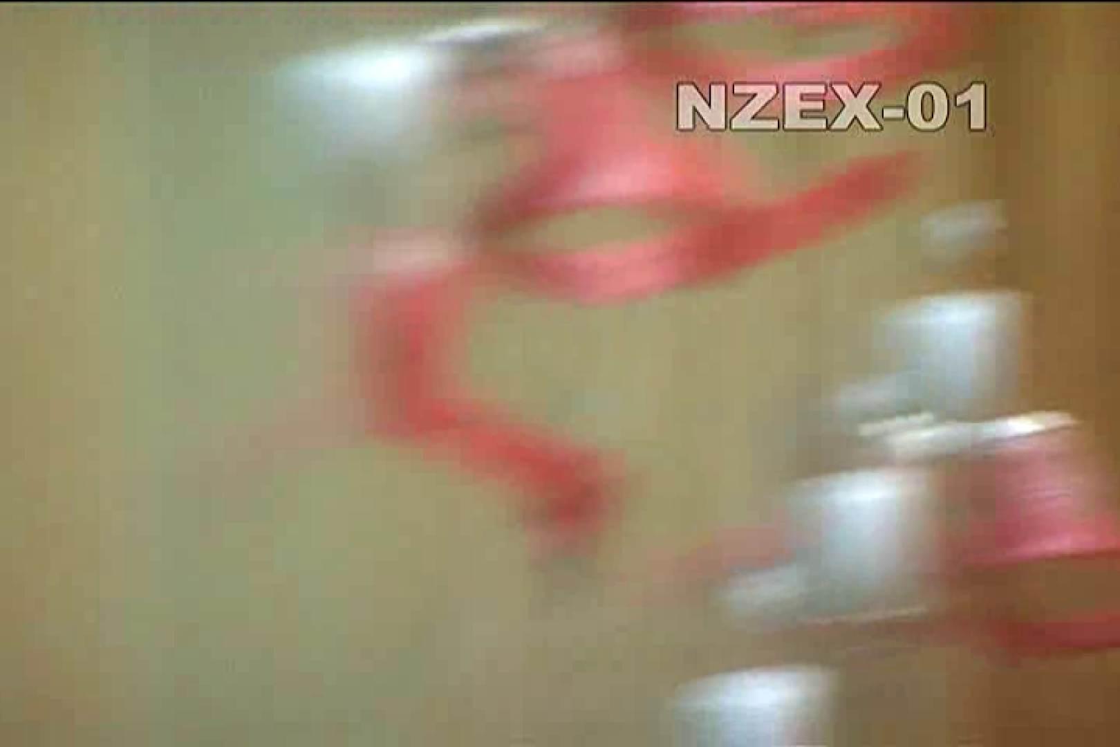 無修正ヌード|覗き穴 nzex-01_02|ピープフォックス(盗撮狐)